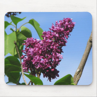 Beautiful Lilac Bloom Mouse Mat