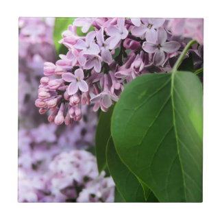 Beautiful Lilac Bloom Small Square Tile