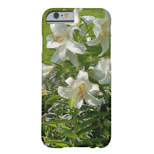 Beautiful Lily Flower Cover