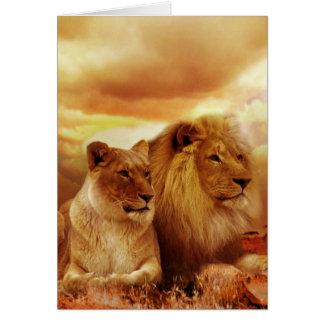 Beautiful lion couple card