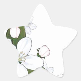 Beautiful lotus flower star sticker