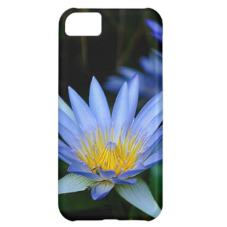 Beautiful lotus flowers and meaning iPhone 5C case