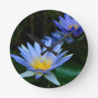 Beautiful lotus flowers and meaning round clock