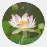 Beautiful Lotus Round Stickers