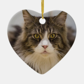 Beautiful maine coon christmas ornament