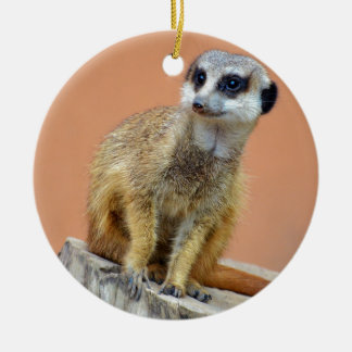 Beautiful meerkat christmas ornament
