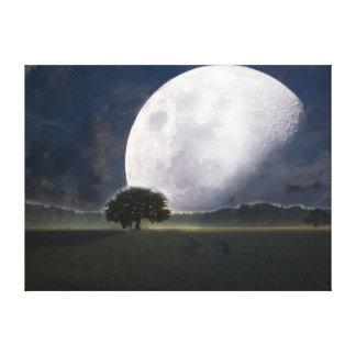 Beautiful Moon Canvas Print