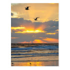 Beautiful Morning Beach Sunrise Scenery Postcard
