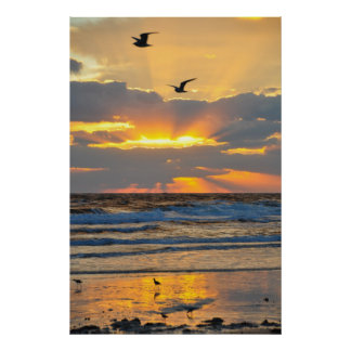Beautiful Morning Beach Sunrise Scenery Poster