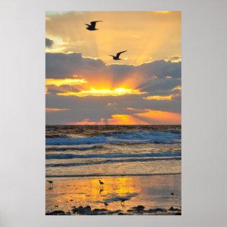 Beautiful Morning Beach Sunrise Scenery Poster