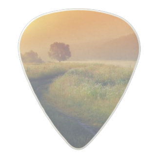 Beautiful morning landscape with the river acetal guitar pick
