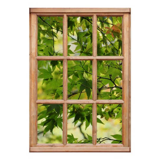 Beautiful Morning View of Leaves from a Window