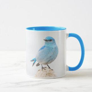 Beautiful Mountain Bluebird Mug
