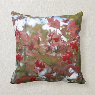 Beautiful Nature Autumn Berries Fall Season Cool Cushion
