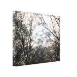 Beautiful nature canvas canvas prints
