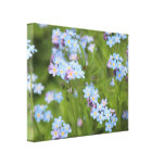 Beautiful nature canvas gallery wrapped canvas