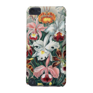 Beautiful Nature - Orchids iPod Touch 5G Cases