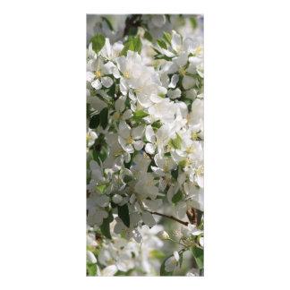 Beautiful Nature Photo Of White Apple Blossom Custom Rack Card