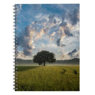 Beautiful nature scenery notebooks