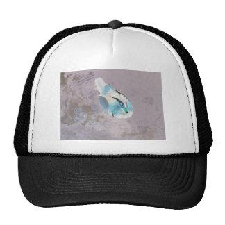 beautiful negative duck cap