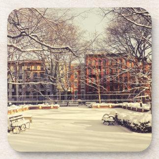 Beautiful New York Winter Coaster