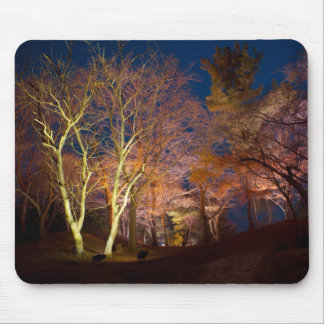 Beautiful Night Tree View Mouse Pad
