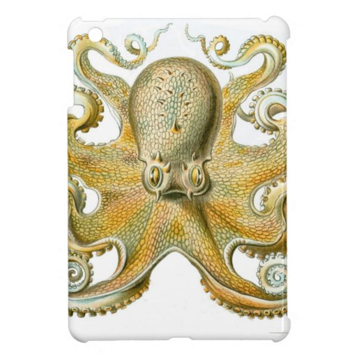 Beautiful octopus picture by Haeckel iPad Mini Covers