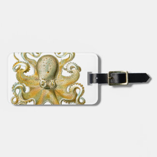 Beautiful octopus picture by Haeckel Tag For Luggage