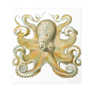 Beautiful octopus picture by Haeckel Scratch Pads