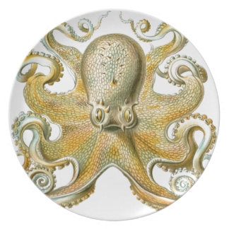 Beautiful octopus picture by Haeckel Party Plates