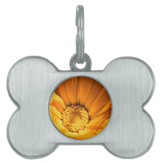 Beautiful orange and yellow daisy pet name tags
