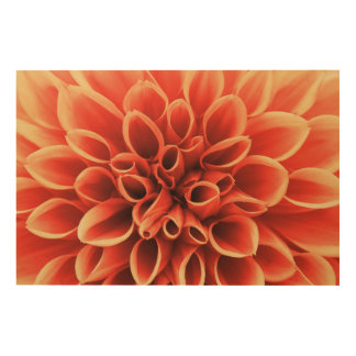 Beautiful Orange Dahlia Flower Wood Wall Decor