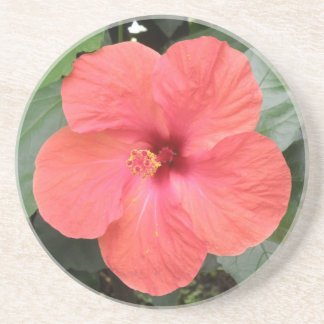 Beautiful Orange Hibiscus Flower Coasters