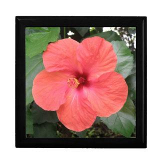 Beautiful Orange Hibiscus Flower Gift Box