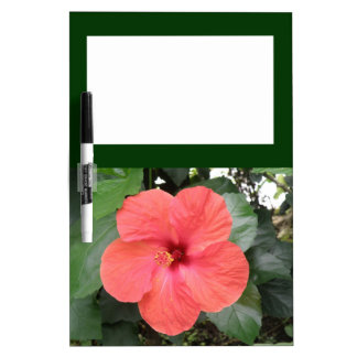 Beautiful Orange Hibiscus Flower Memo Board