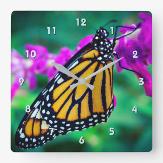 Beautiful orange monarch butterfly close-up photo square wall clock