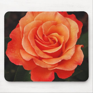 Beautiful orange rose petals print mouse pad
