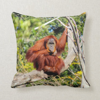 Beautiful Orangutan photo Cushion