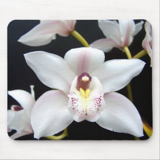 Beautiful Orchid Mouse Mat
