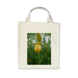 Beautiful Organic Grocery Tote Canvas Bags