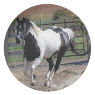 Beautiful Paint Pinto Horse Plate
