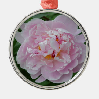 Beautiful Pale Pink Peony Flower - Floral Garden Silver-Colored Round Decoration