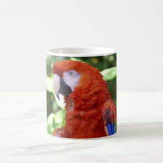Beautiful Parrot Coffee Mug
