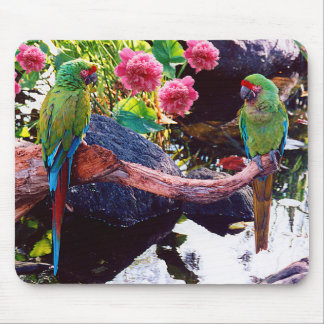 Beautiful Parrots with Pink Flowers - Mouse Mat