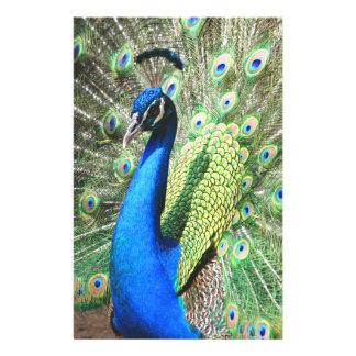 Beautiful Peacock 14 Cm X 21.5 Cm Flyer