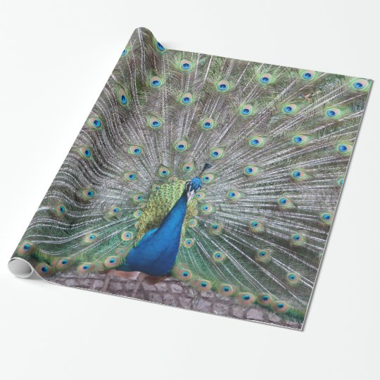 Beautiful Peacock Bird Plumage Colourful Feather Wrapping Paper