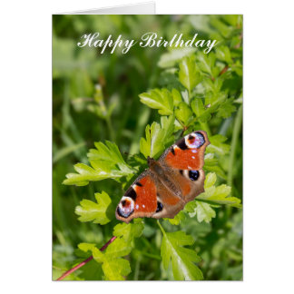 Beautiful Peacock Butterfly Birthday Card