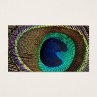 Beautiful Peacock Feather Business Card