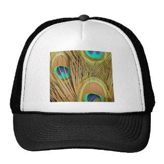 beautiful peacock feathers trucker hat