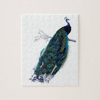 Beautiful peacock jigsaw puzzle